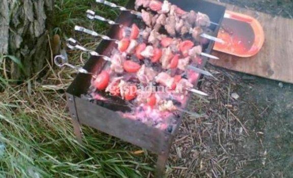 Mėsos ir pomidorų šašlykai