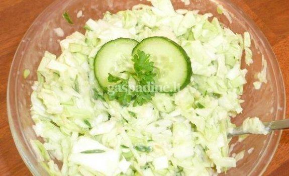 Gaivios šviežių kopūstų ir obuolių salotos