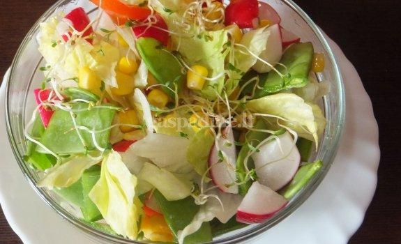 Gaivios salotos su kukurūzais ir ridikėlių daigais