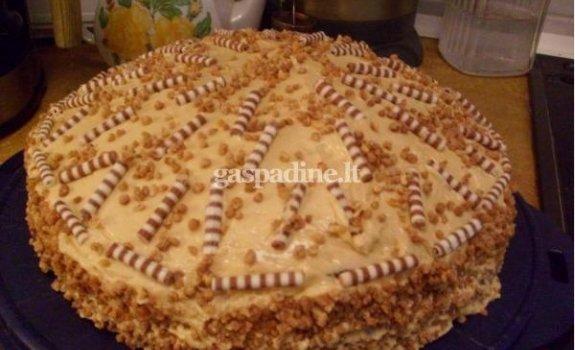 Medaus tortukas